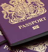Many Uk Passports — Stockfoto