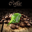 Fresh coffee — Stock Photo #12145293