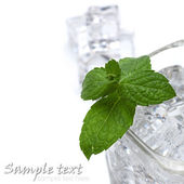 Glass of water and ice — Stock Photo
