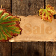 Card of autumn sell — Stock Photo