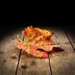 autumn background — Stock Photo #13429526