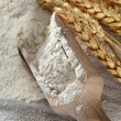 Heap of plain flour with wooden scoop — Foto de Stock