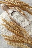 Heap vetemjöl med trä scoop — Stockfoto