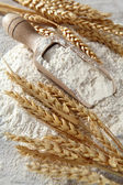 Montón de harina con cuchara de madera — Foto de Stock