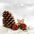 Cones and white snow — Stock Photo