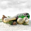 Bottle of champagne and snow — Stock Photo