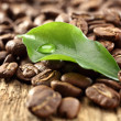 Coffee and green leaf — Stock Photo
