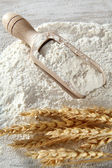 Wooden flour scoop — Stock Photo
