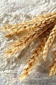 White flour and rye — Stock Photo