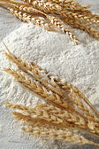 White flour and rye — Stock Photo