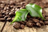 Café fresco y hojas con la cosecha de agua — Foto de Stock