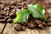 Fresh coffee and leaves with crop of water — Стоковое фото