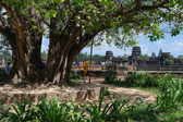 Angkor Wat. Cambodia. — Stok fotoğraf