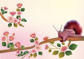 Sakura ,snaill, spring , postcard . — Stock Vector