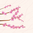 Flowers sakura. - Stock Vector