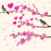 Love birds, sakura, spring, Valentine's Day. — Stock Vector