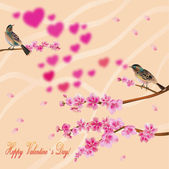 Love birds, sakura, spring, Valentine's Day. — Stock Vector