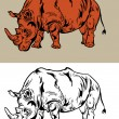 Stock Vector: Rhino drawing Vector