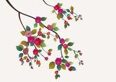 Sakura , spring , postcard . — Stock Vector