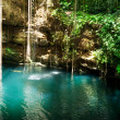Ik-Kil Cenote, Chichen Itza, Mexico - Stock Photo
