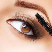 Maquillaje. maquillaje. aplicar el rimel. pestañas largas — Foto de Stock