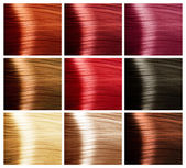 Palette de couleurs de cheveux — Photo