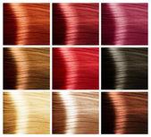 Paleta kolorów włosów — Zdjęcie stockowe