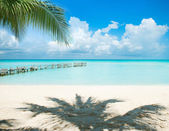 Caribbean Island. Vacation and Tourism concept. Sun and Palms — Stock Photo
