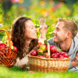 Couple Relaxing on the Grass and Eating Apples in Autumn Garden — Stock Photo #14134313