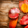 Foto de Stock  : Autumn Leaves over wooden background. Fall
