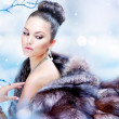 Winter Woman in Luxury Fur Coat — Stock Photo #14134499