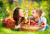 Couple Relaxing on the Grass and Eating Apples in Autumn Garden — Stock Photo