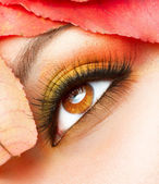 Autumn Makeup. Fall Make-up Closeup — Stock Photo
