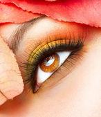 Trucco d'autunno. closeup di make-up autunno — Foto Stock