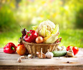 Organic Vegetables — Stockfoto