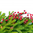 Christmas Tree Decorations Border Design — Stock Photo