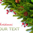 Christmas Tree decoration Border Design — Foto de stock #16276089