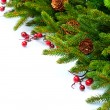 Stock Photo: Christmas Tree decoration Border Design