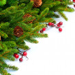 Christmas Tree decoration Border Design — Foto de Stock