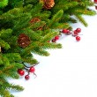 Christmas Tree decoration Border Design — 图库照片