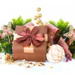 Stock Photo: Christmas Decoration and Gift Box Isolated on White