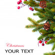 Christmas. Fir tree Border Design Isolated on white - Stock Photo