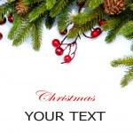 Boże Narodzenie drzewo granica projekt na białym tle — Zdjęcie stockowe