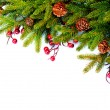 Christmas Evergreen Tree Border Design. Isolated on white — 图库照片