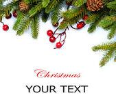 Noel ağacı sınır tasarlamak üzerine beyaz izole — Stok fotoğraf