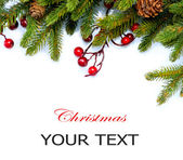 Christmas Tree Border Design Isolated on white — Stock Photo