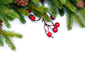 Christmas. Evergreen Fir tree Border Design — Stock Photo