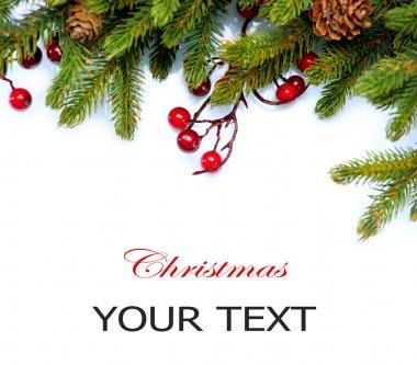 Christmas Tree Border Design Isolated on white