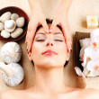 Spa Massage. Young Woman Getting Facial Massage - Stock Photo