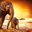 Elephant Mother and Baby outdoors — Stock Photo #21975161